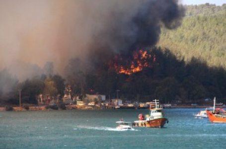 Požari besne Antalijom – četiri osobe stradale, turisti napuštaju hotele